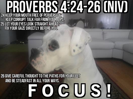 Proverbs 4:24-26
